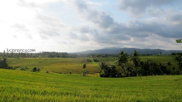 Somewhere near Padang Bai.